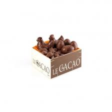 Boîte découverte cacao